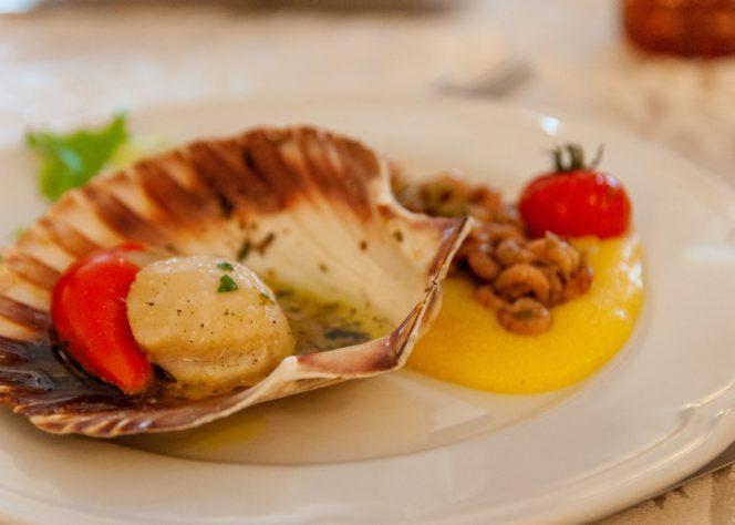 Cuisine du pertuis- la St Jacques au cfa lagord cité du gout 17